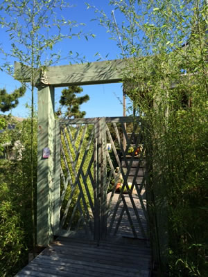 fire island pines lodging